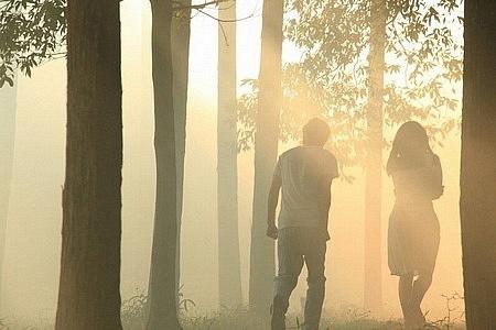 парень с девушкой в лесу