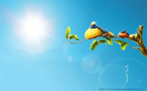Забавные рисунки птички