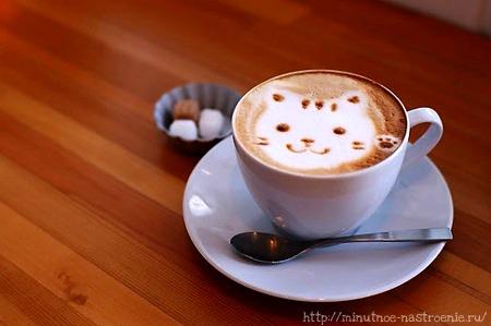 Красивые кофейные рисунки киса