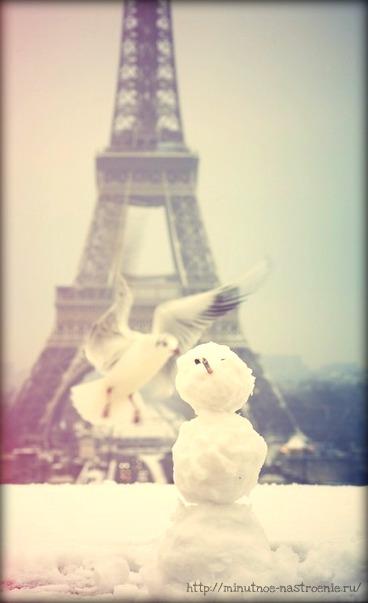 Нежная зима в Париже фото 4