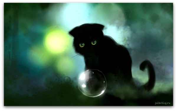 Загадочные котята Apofiss foto 10