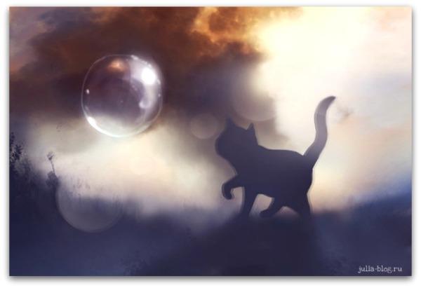 Загадочные котята Apofiss foto 11