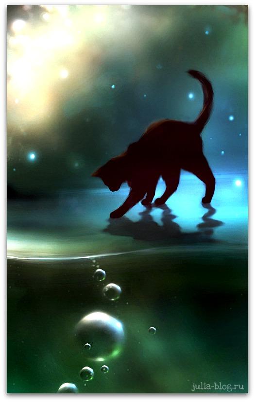 Загадочные котята Apofiss foto 2