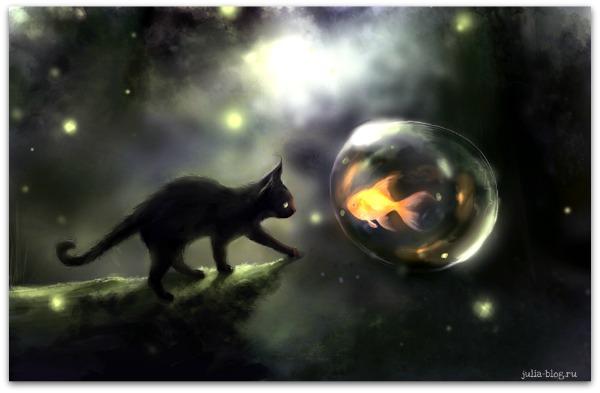 Загадочные котята Apofiss foto 3