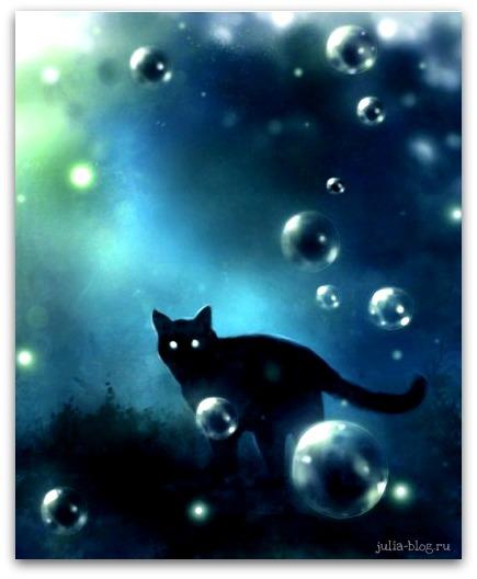 Загадочные котята Apofiss foto 4
