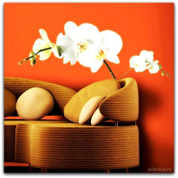 Виниловые цветы - стикеры на стену орхидея - фото