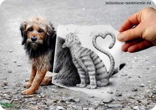 «Pencil VS Camera» от Ben Heine кошка  с собакой