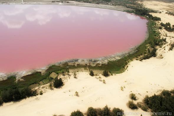 розовое озеро в австралии