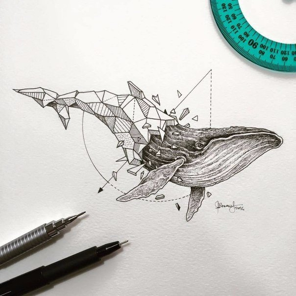 Геометрия в рисунках