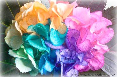 Радужные цветы 9