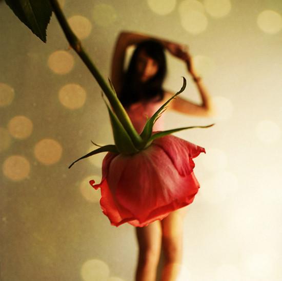 Девушки-цветы роза фото